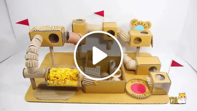 Cute Hamster Running In Tube Maze - Video & GIFs   cute hamsters, maze for hamster, diy hamster, diy cardboard, making tube maze, making toys for hamster, diy pet toys, hamster race, funny hamster