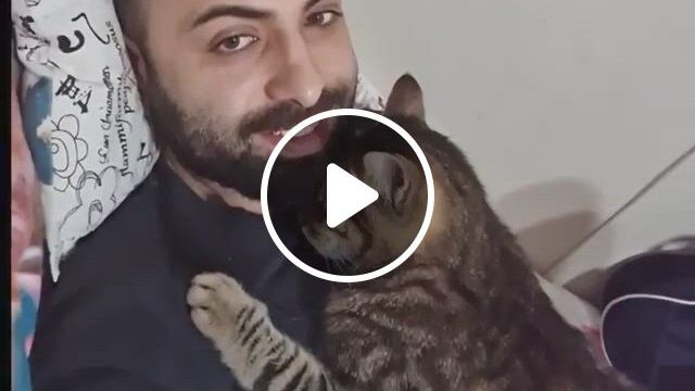 What Greater Gift Than The Love Of A Cat? - Video & GIFs | all about cats, funny pets, funny animals, cute animals, cat and dog videos, cat gif, cat memes, cute cats, beautiful people