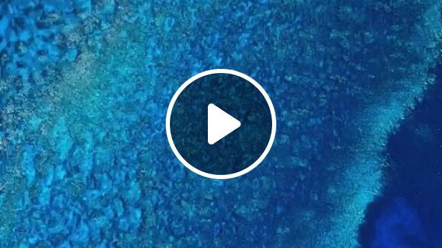 Live Blue Wallpaper - Video & GIFs | sea and ocean, iphone backgrounds, tumblr backgrounds, all nature, games for kids
