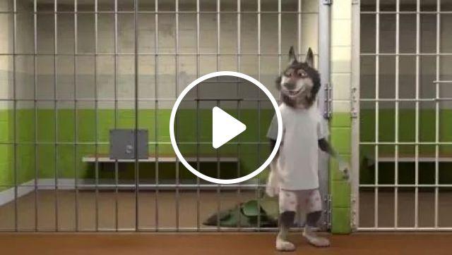 Wolf's Magic, funny, Wolf, animals, magic