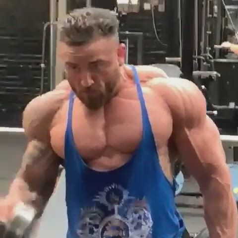 Arm workout - Video & GIFs | arm workout,bodybuilding,body building women,lactose free,gluten free,powerlifting training,remember the name,body building men,bodybuilding motivation,nut free,vegans,bodybuilder