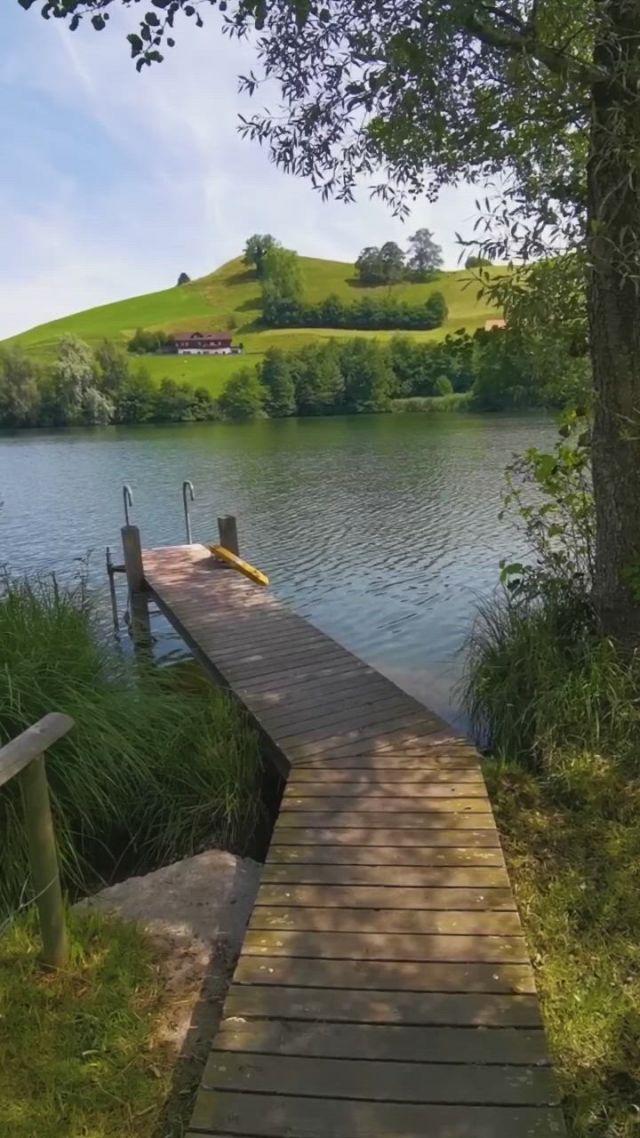 Switzerland near zurich - Video & GIFs | reisen,schweiz,see,beautiful nature scenes,amazing nature,beautiful world,places in switzerland,alps switzerland,places around the world,travel around the world