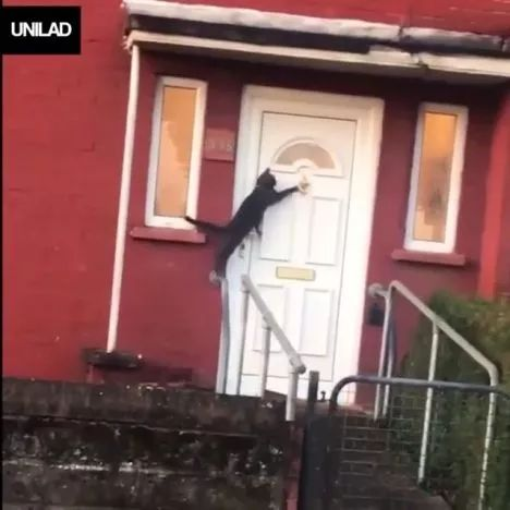 Knock, knock, anybody home?