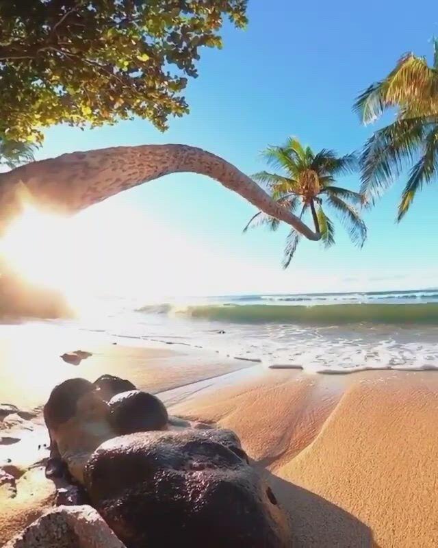 Beautiful maldives - Video & GIFs   vacation trips,need a vacation,beautiful beaches,tropical beaches,tropical vibes,exotic beaches,tropical paradise,beautiful hotels,beautiful sky