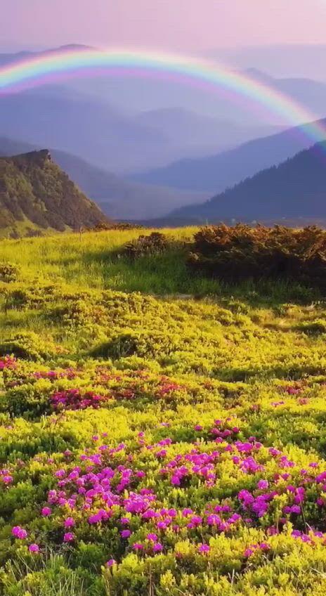 Paradise on earth - Video & GIFs | lindas paisagens,imagens fantasticas,fotos de paisagens lindas,beautiful places to travel,amazing nature,beautiful landscapes,flower landscape,paradise on earth