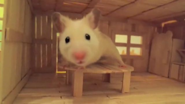 Cute Wooden Hamster House