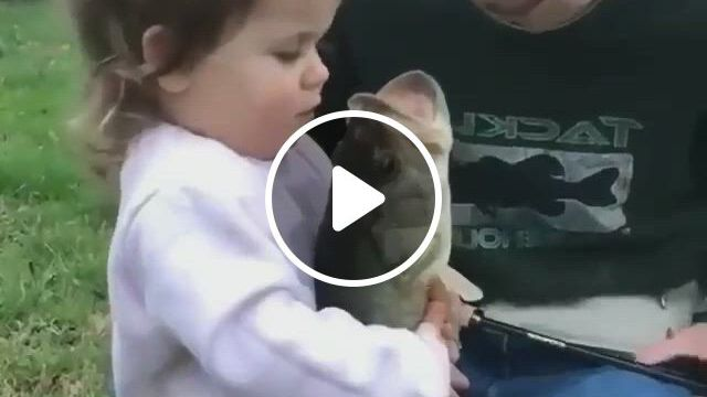 Baby Says Okay To Fish Memes - Video & GIFs | cute funny baby , cute funny babies, funny baby memes, funny for kids, funny short , kids , funny cute, cute little animals, animals for kids