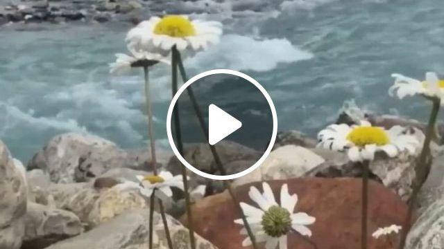 Wallpaper Animado - Video & GIFs   hermosa fotografia de paisaje, hermosos paisajes, cascadas bonitas, beautiful places to travel, amazing nature, beautiful landscapes