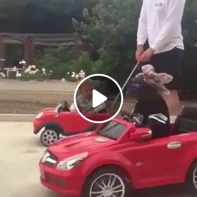 Pet's supercar, Push Car, Car for Kids, Baby Electric Car, Funny Dog, Bulldog, animals