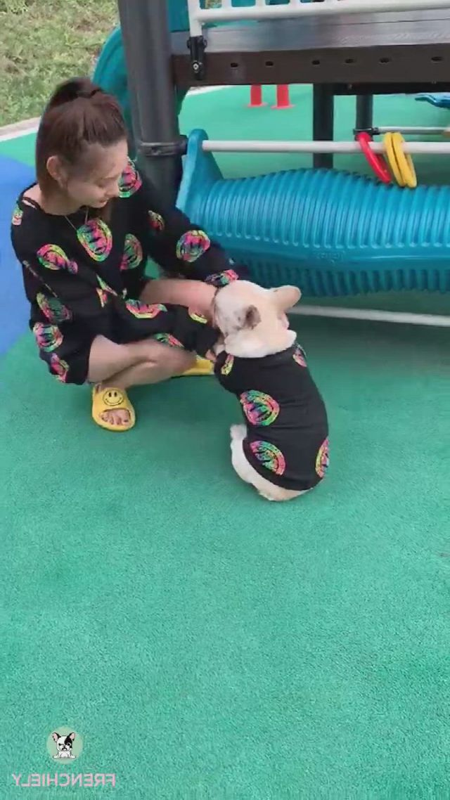 Pet and owner matching clothes