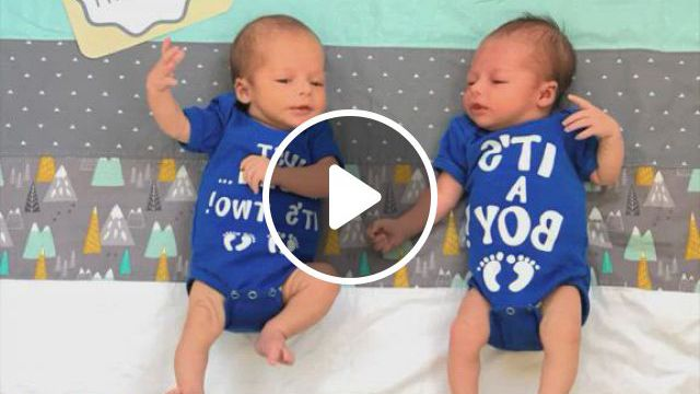 Monthly Pictures Of Baby - Video & GIFs   baby month by month, cute baby dogs, cute babies, twin mom, 6 months, toddler bed