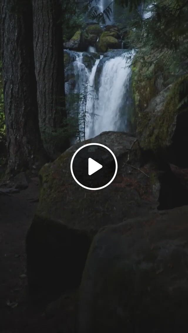 A Walk In The Woods - Video & GIFs   beautiful nature scenes, beautiful places nature, beautiful gif, amazing nature, beautiful places, aesthetic songs, film aesthetic