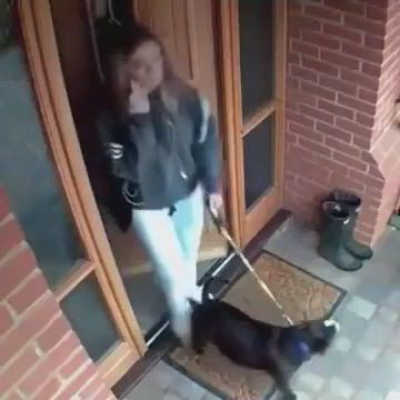 Didn't even lock the door - Video & GIFs | funny animals,beauty animals,animals amazing,cute funny animals,cute baby animals,amazing gifs,funny clips,cute love
