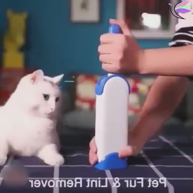 Pet fur remover - Video & GIFs | cleaning hacks,pets,pet hair,household cleaning tips,house cleaning tips,diy cleaning products,cleaning brushes,diy hacks,home gadgets,gadgets and gizmos,lint remover