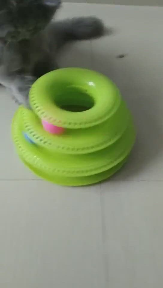 Funny Intelligence Triple Play Disc Ball Cat Toy