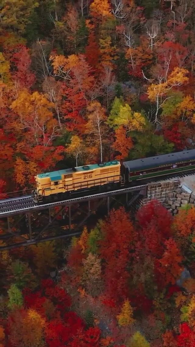 The Conway scenic railway is one of the best ways to experience the Fall colors in New England - Video & GIFs | beautiful places nature,beautiful places to travel,amazing nature,cool places to visit,places to travel,whatsapp status for girls,cute ducklings,alone art,cute love songs,silhouette clip art,emoji faces