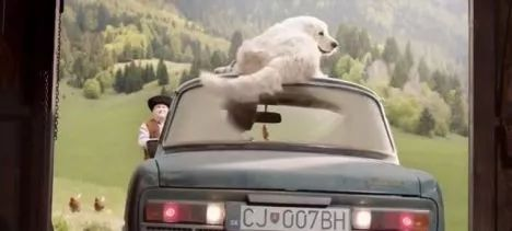 A smart dog and a cute chick help the owner back the car