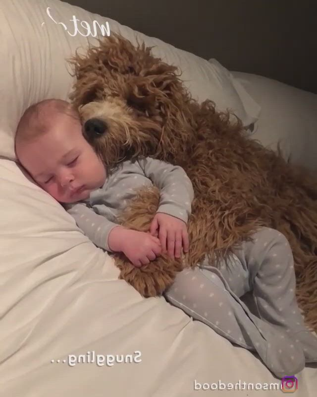 Snuggling time