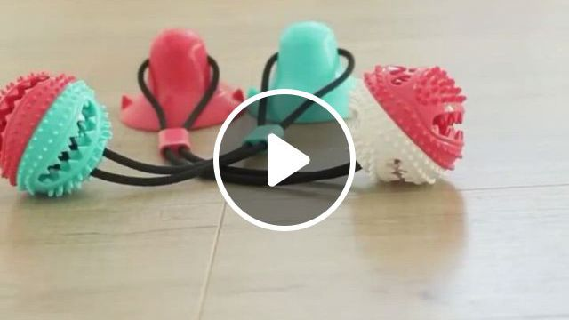 French Bulldog Puppy Chewing Toy - Video & GIFs | bulldog clothes, dog toy ball, dog treat toys, dog treats, french bulldog clothes, dog raincoat, dog boots, interactive toys, bulldog puppies, more cute, dogs