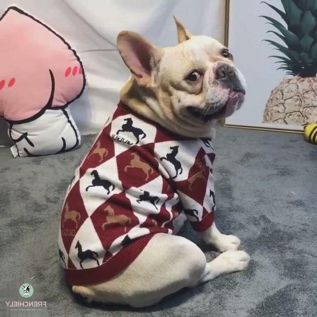 Stylish Dog Cardigan Jumper for Medium Dogs