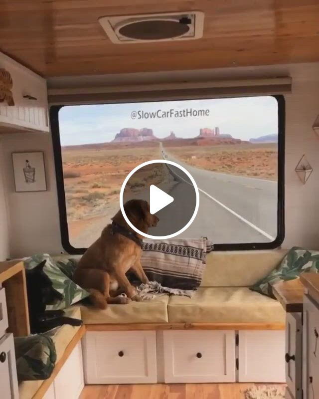 Beautiful Routes - Video & GIFs   travel insurance, travel, trip, lots of money, extra money, getting old, how to plan, skate, traveling, animals, beautiful,