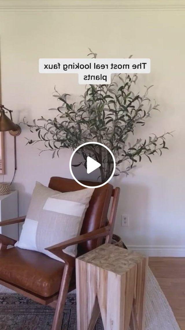 The Best Faux Plants For Your House Plants - Video & GIFs   fake plants, faux plants, potted trees, artificial plants, indoor plants, boston ferns, silk tree, rattan basket, ficus, houseplants