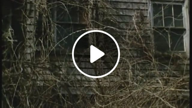 Bare Minimum Grey Gardens 1975 - Video & GIFs   movie directors, documentaries, movies to watch, grey gardens house, classic movies, cinematography, documentary, filmmaking, it hurts, cinema, the documentary