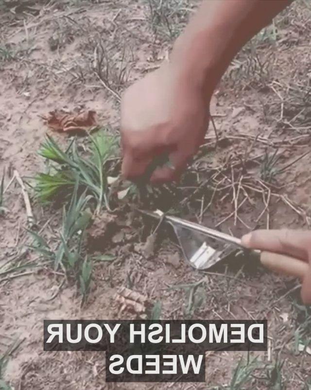 Garden Hand Weeder