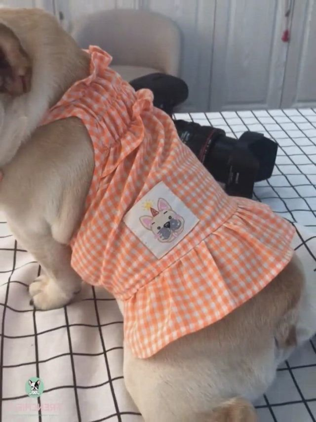 Dog Dress for Medium Dog French Bulldogs