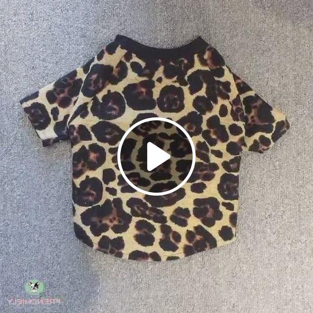 Dog Leopard Mesh Sunscreen Shirts For Pugs - Video & GIFs   bulldog clothes, dog shirt, french bulldog clothes, shitzu puppies, bulldog puppies, puppy goldendoodle, baby dogs, doggies, dog raincoat, medium dogs, dog dresses
