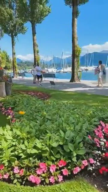 Romancing luzern - Video & GIFs | travel aesthetic,tarot reading,zurich,amazing nature,istanbul,cities,beautiful places,places to visit